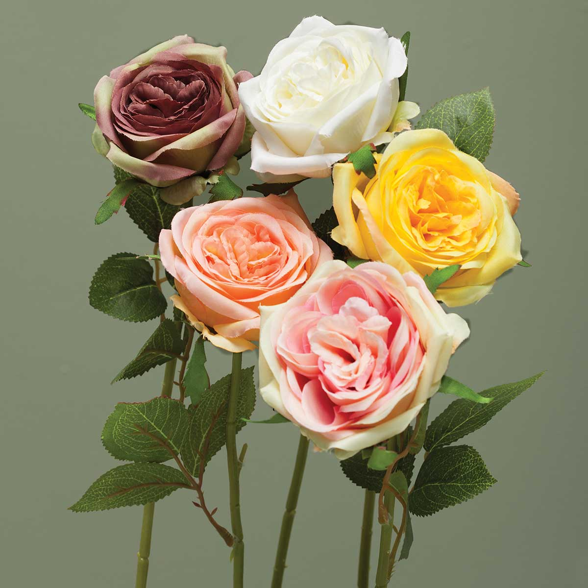 AMERICAN ROSE ASSORTMENT PACK 15 UNITS