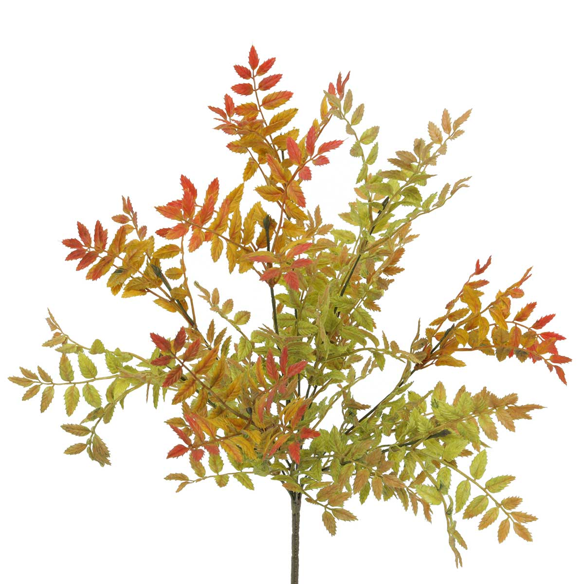 MIXED PRIVET FALL BUSH 19""