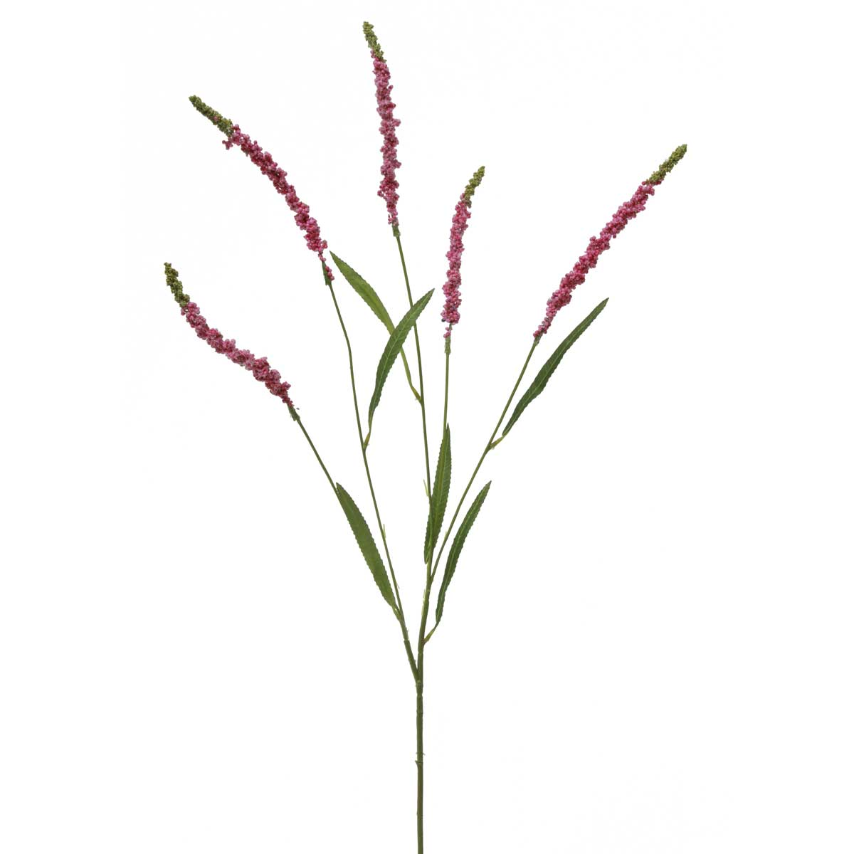 "WILDFLOWER ASTILBE SPRAY X5 37"" Magenta M8815 MG *70sp"