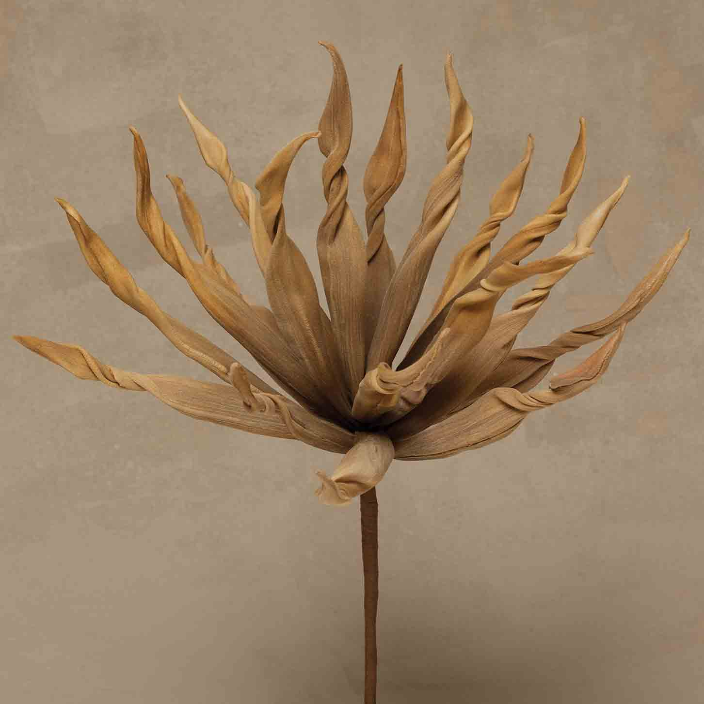 "Tan TWISTED SPIKE BUSH 14"" 70sp"
