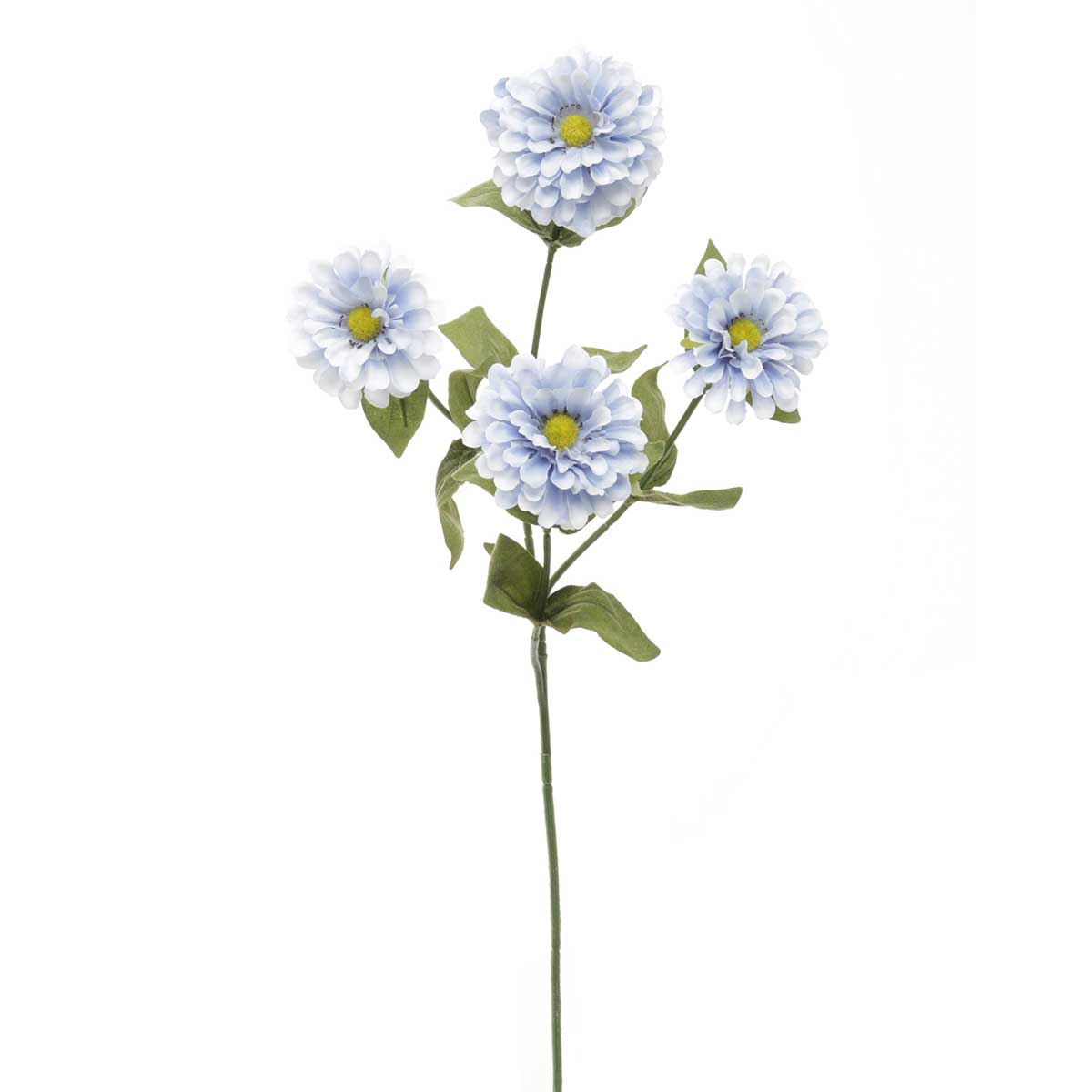 "French Blue Zinnia 2""x23.5"" Periwinkle"