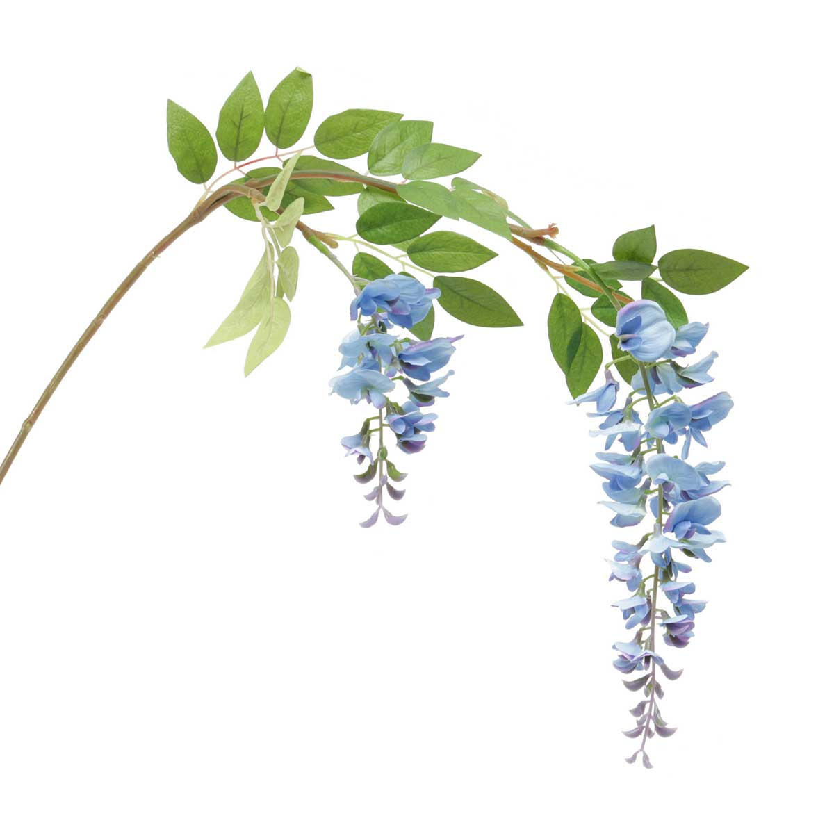 "Wisteria Branch 4""x41"" Blue v22"