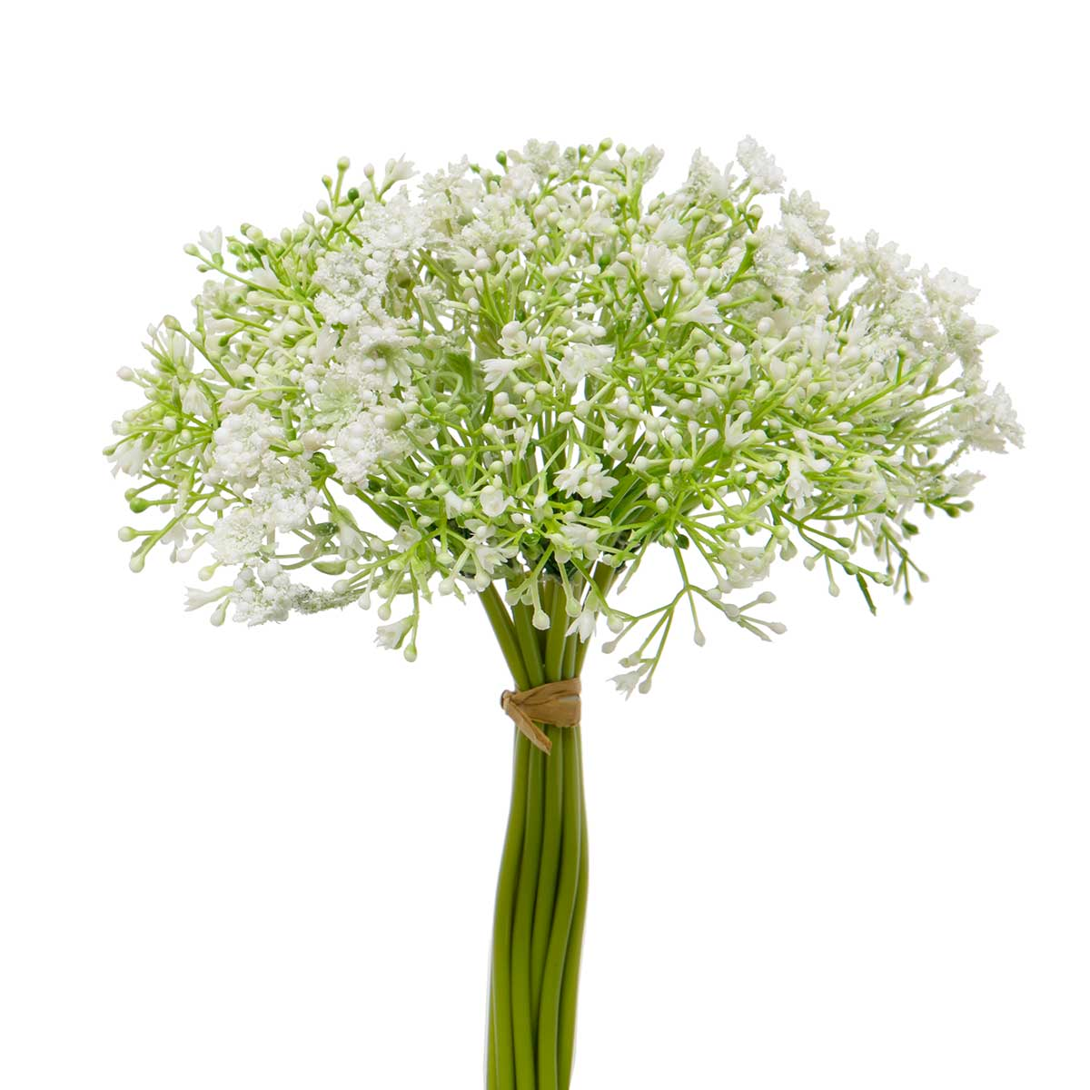 FRESH BABY'S BREATH BUNDLE OF 12