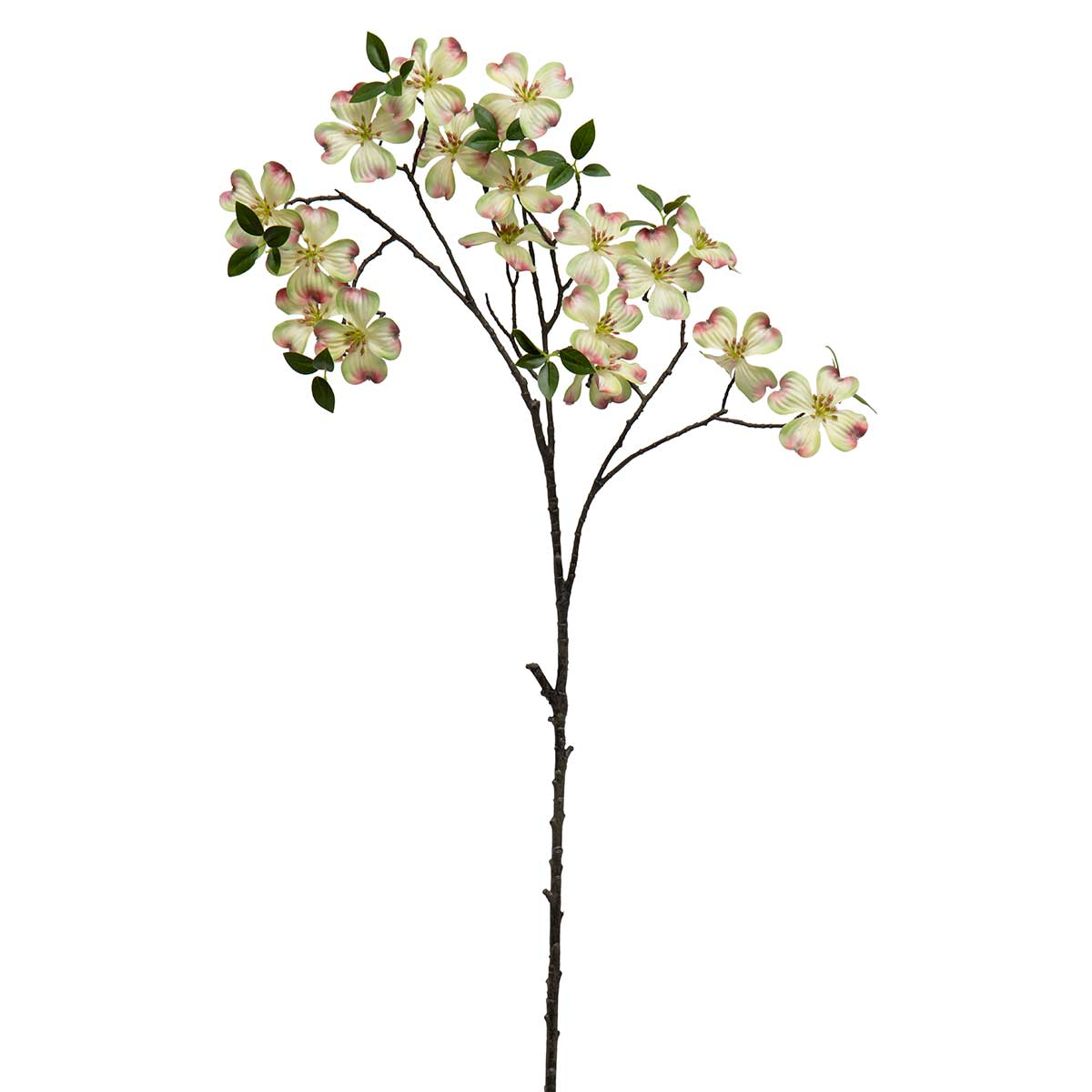 "DOGWOOD BRANCH 21""X42.5"" GREEN"