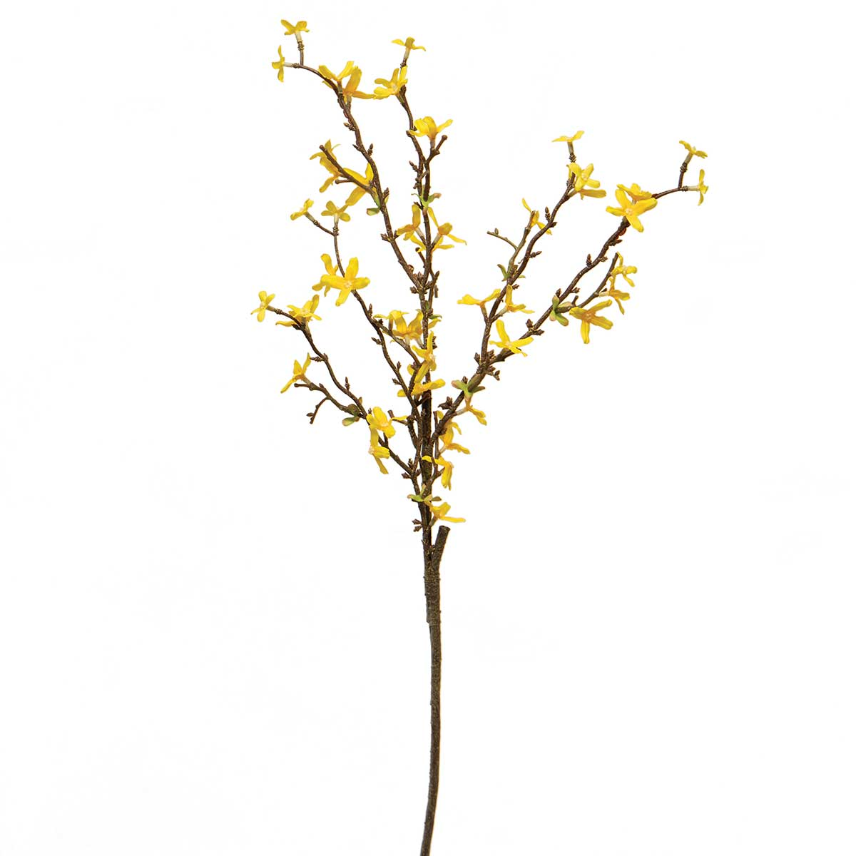 "FORSYTHIA SPRAY YELLOW 13""x30"""