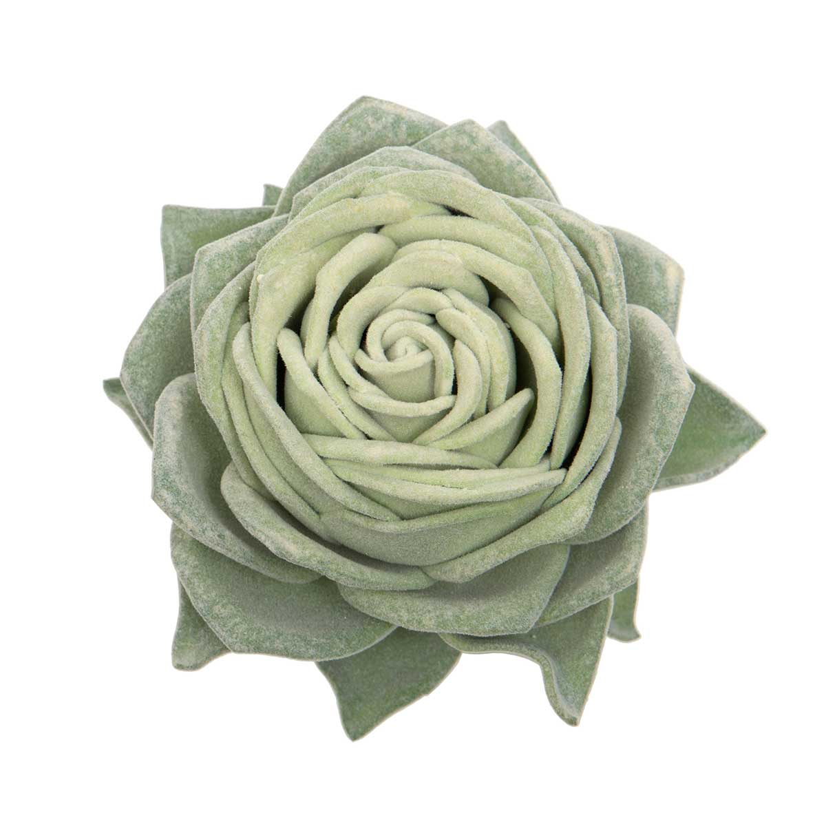 "CABBAGE ROSE SUCCULENT 5""X6.5"" GREEN"