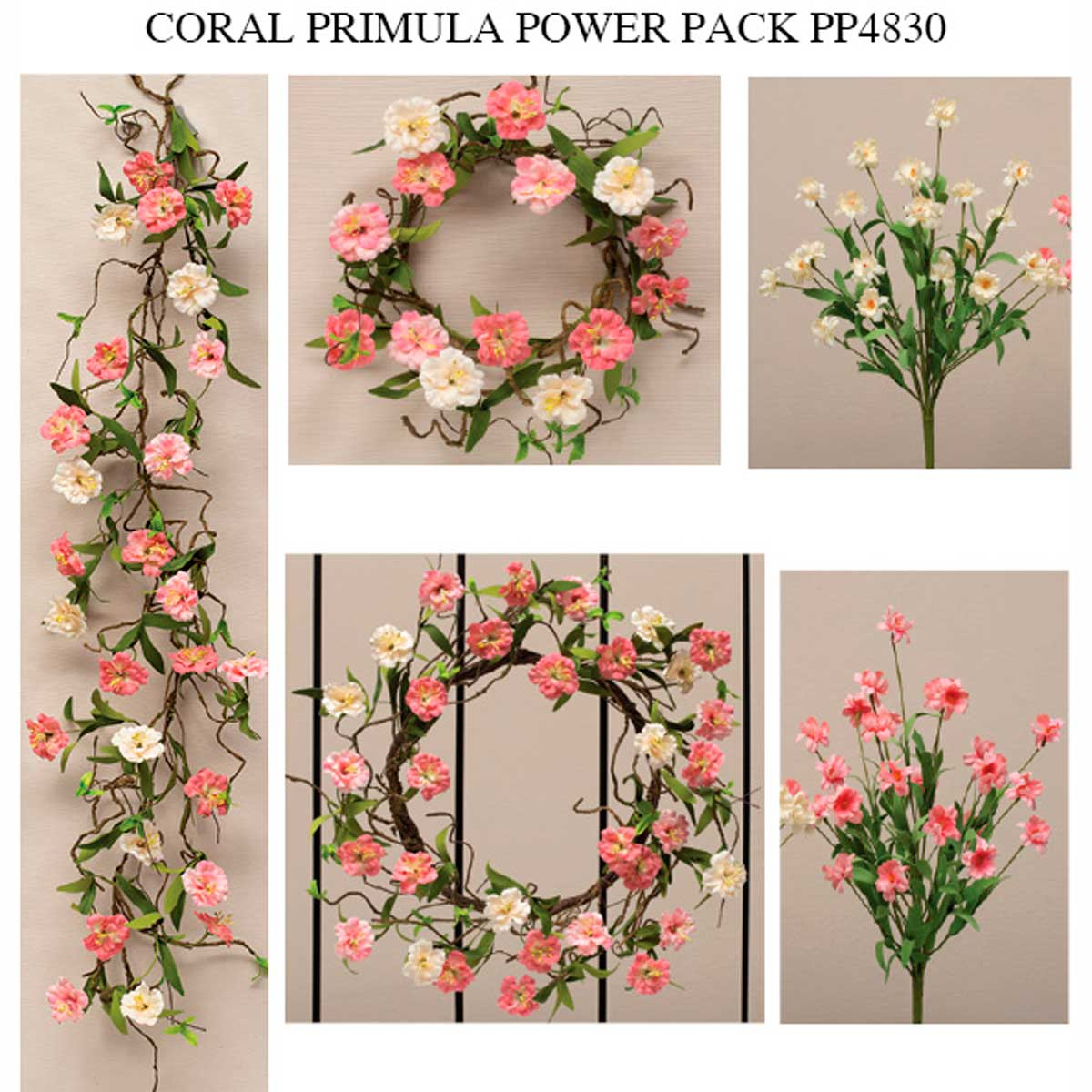 CORAL AND CREAM PRIMULA POWER PACK 11 UNITS