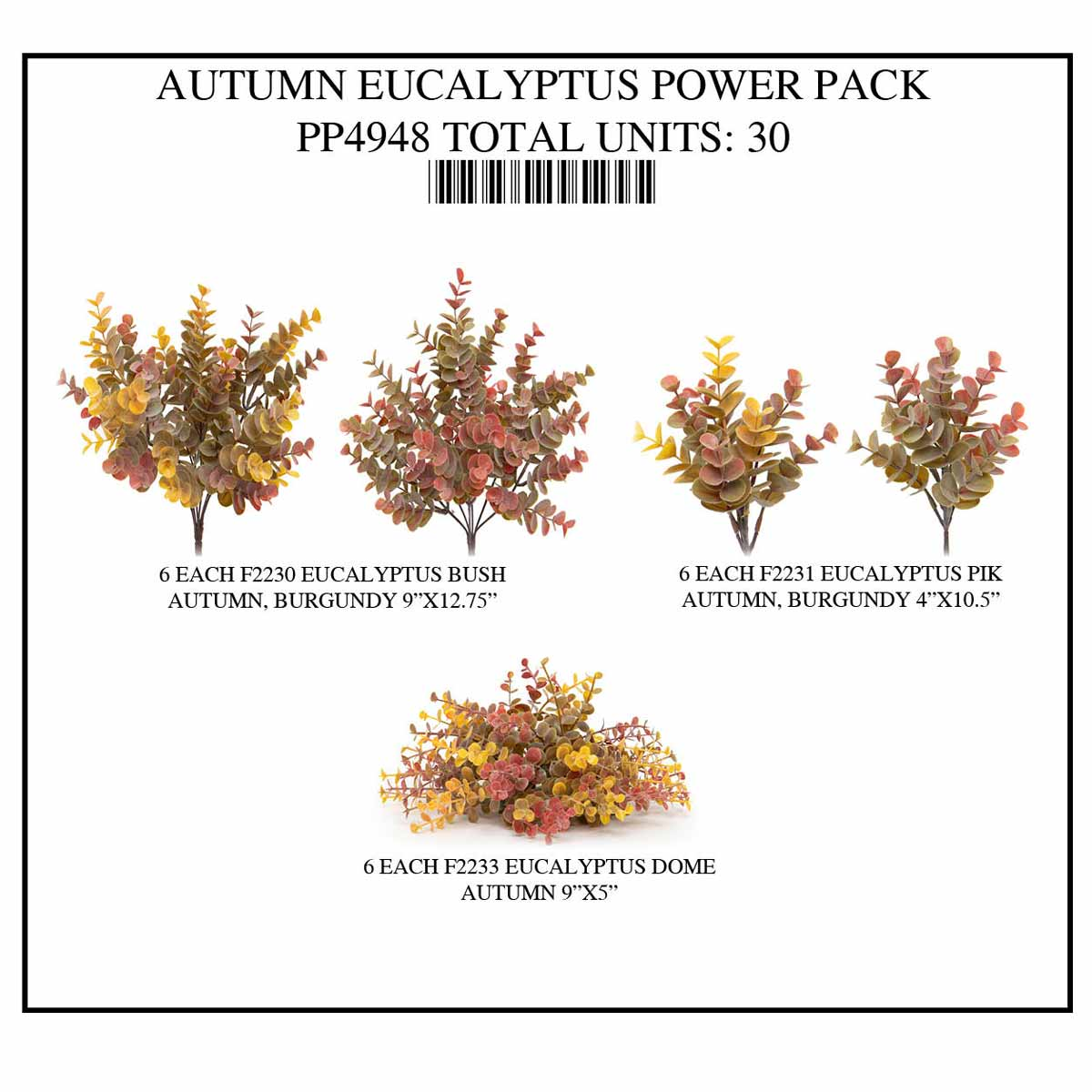 FALL EUCALYPTUS POWER PACK 30 UNITS PP4948