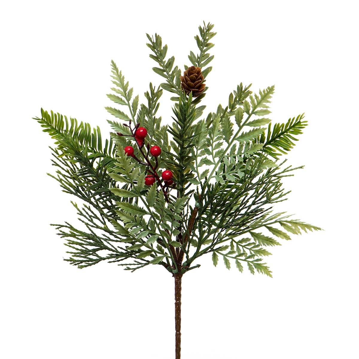 CYPRESS PINE PIK WITH RED BERRIES,