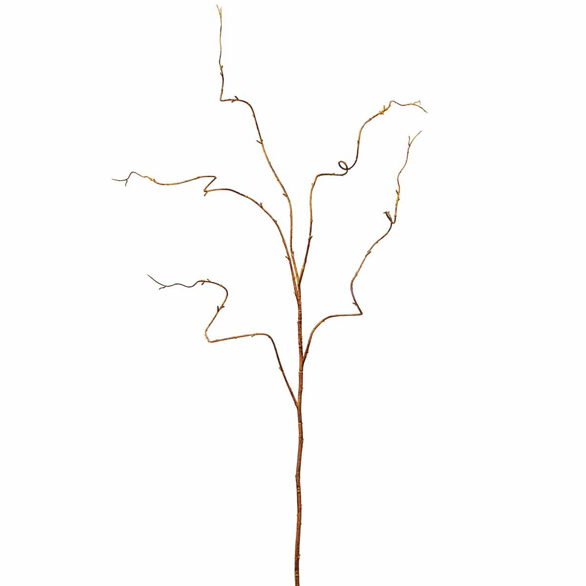 "KIWI TWIG VINE 47"" *70sp"