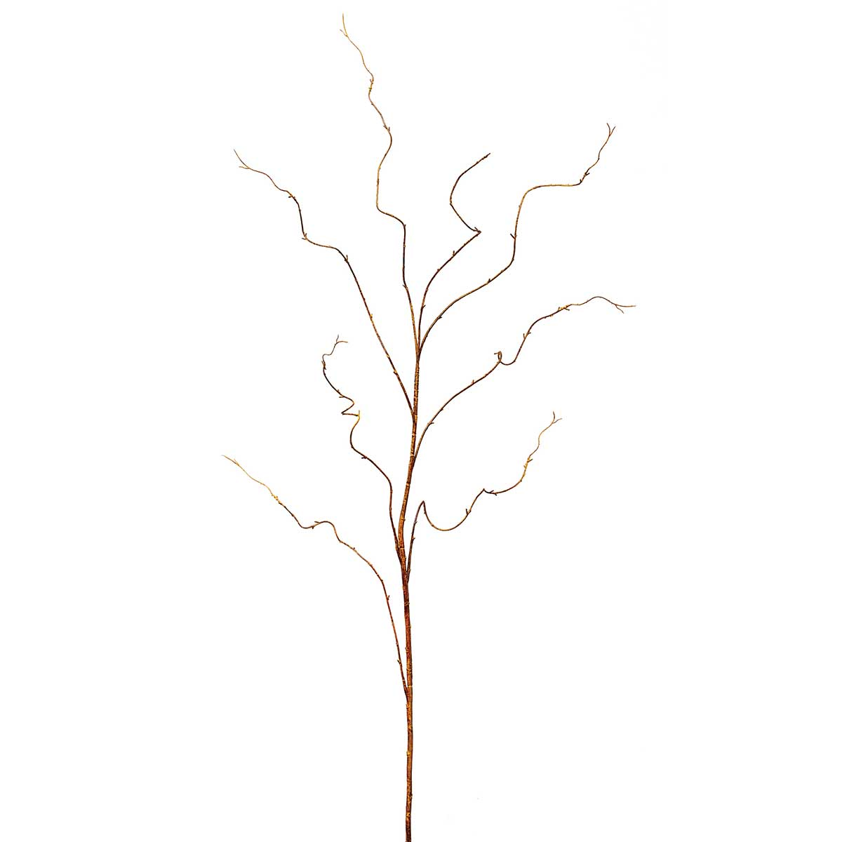"KIWI TWIG VINE 62"" *70sp"