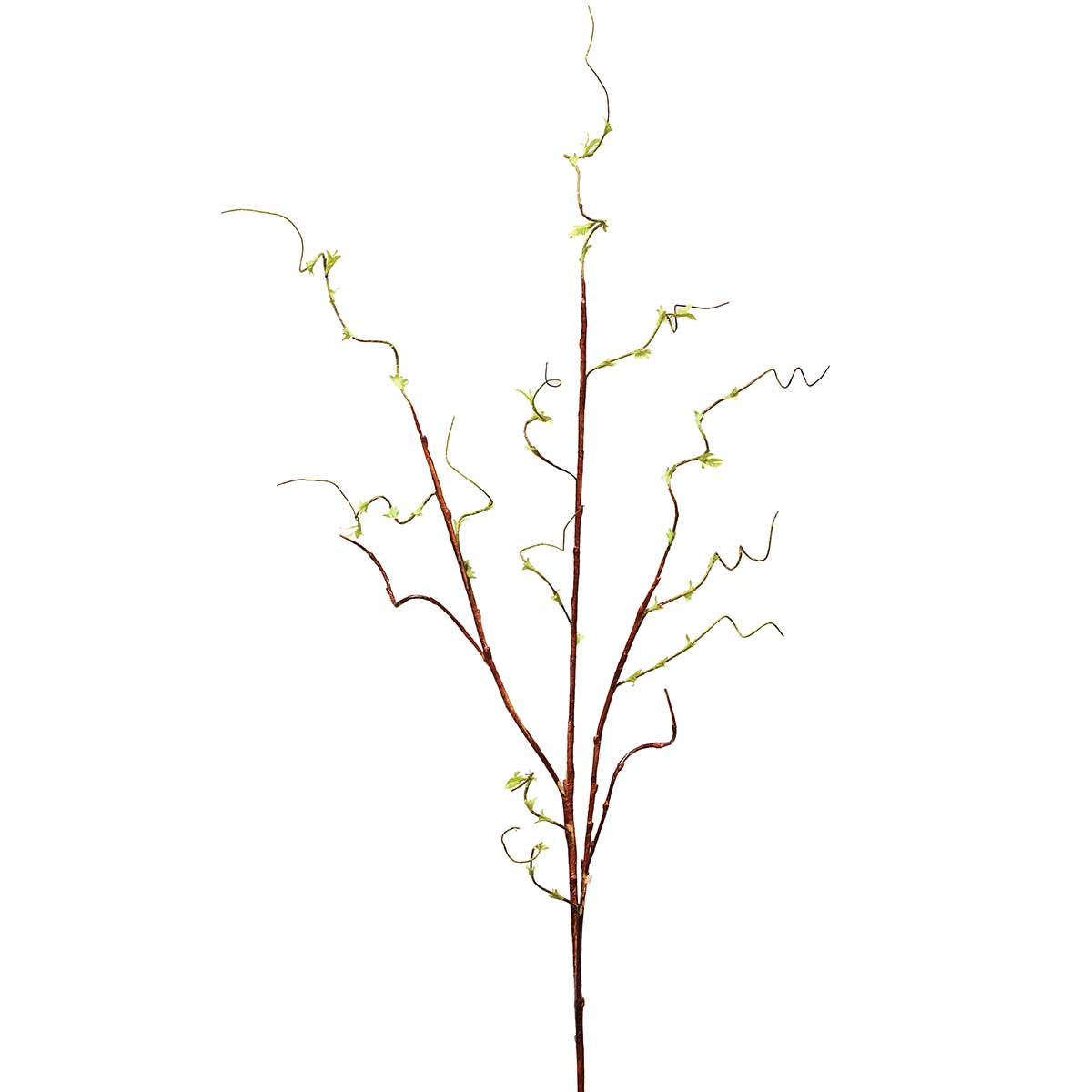 "TWIG LEAF VINE 60"" *70sp"