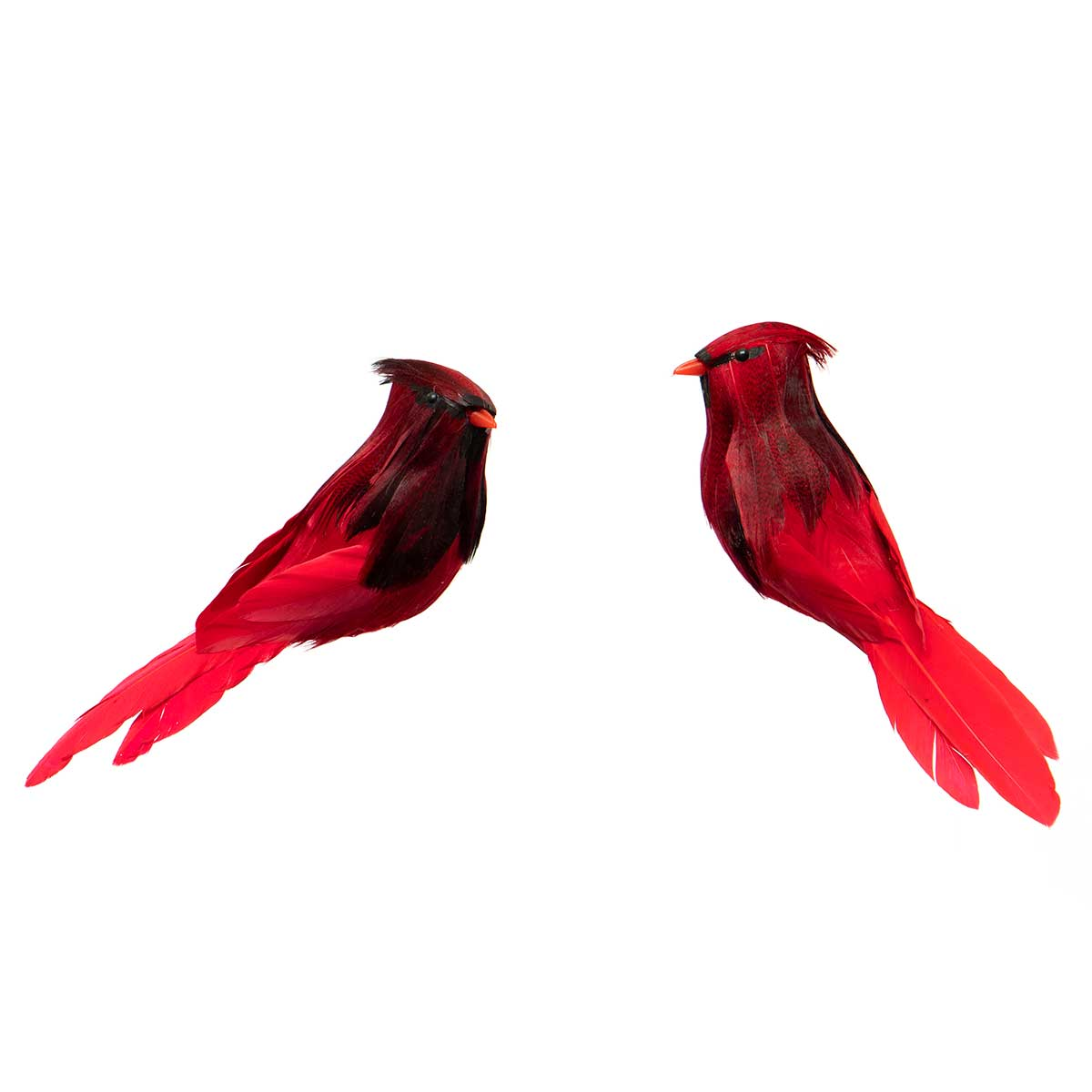 RED/BLACK CARDINAL WITH CLIP