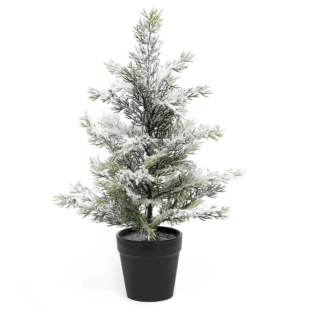 SNOWED EVERGREEN TREE IN BLACK POT SMALL