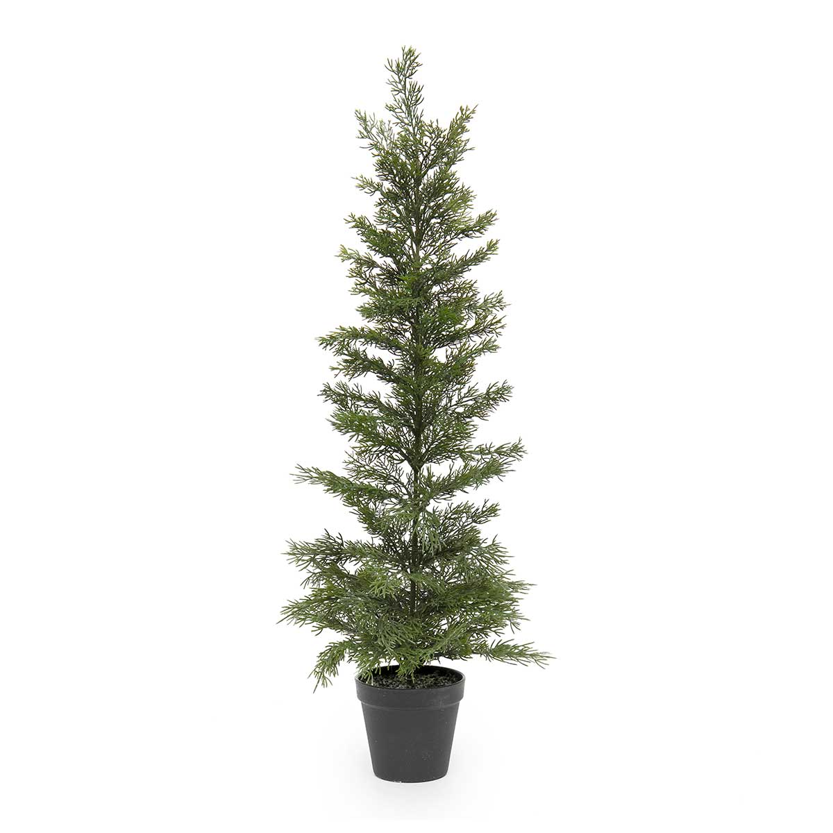 EVERGREEN TREE IN BLACK